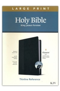 KJV Large Print Thinline Reference Bible, Filament Enabled Edition soft leather look, black onyx indexed -