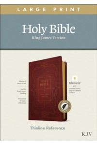 KJV Large Print Thinline Reference Bible, Filament Enabled Edition soft leather look, burgundy indexed -