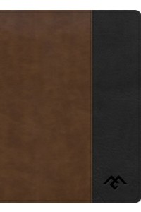 Men of Character Bible soft leather look CSB -  - Getz, Gene