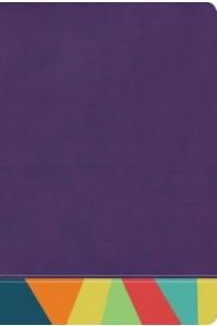 Biblia de Estudio Arcoiris RVR 19060, morado/multicolor -