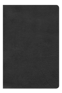 KJV Large Print Personal Size Reference Bible, Black LeatherTouch, Indexed (Inglés) Imitación piel -