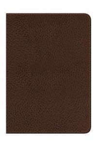 NVI Santa Biblia -  Edición Regalo - Café marrón -  - Zondervan,