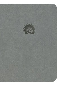 Biblia de Estudio de La Reforma (LBLA) Piel fabricada gris -  - Sproul, R. C