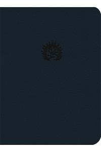 Biblia de Estudio de La Reforma (LBLA) Piel fabricada azul  -  - Sproul, R. C